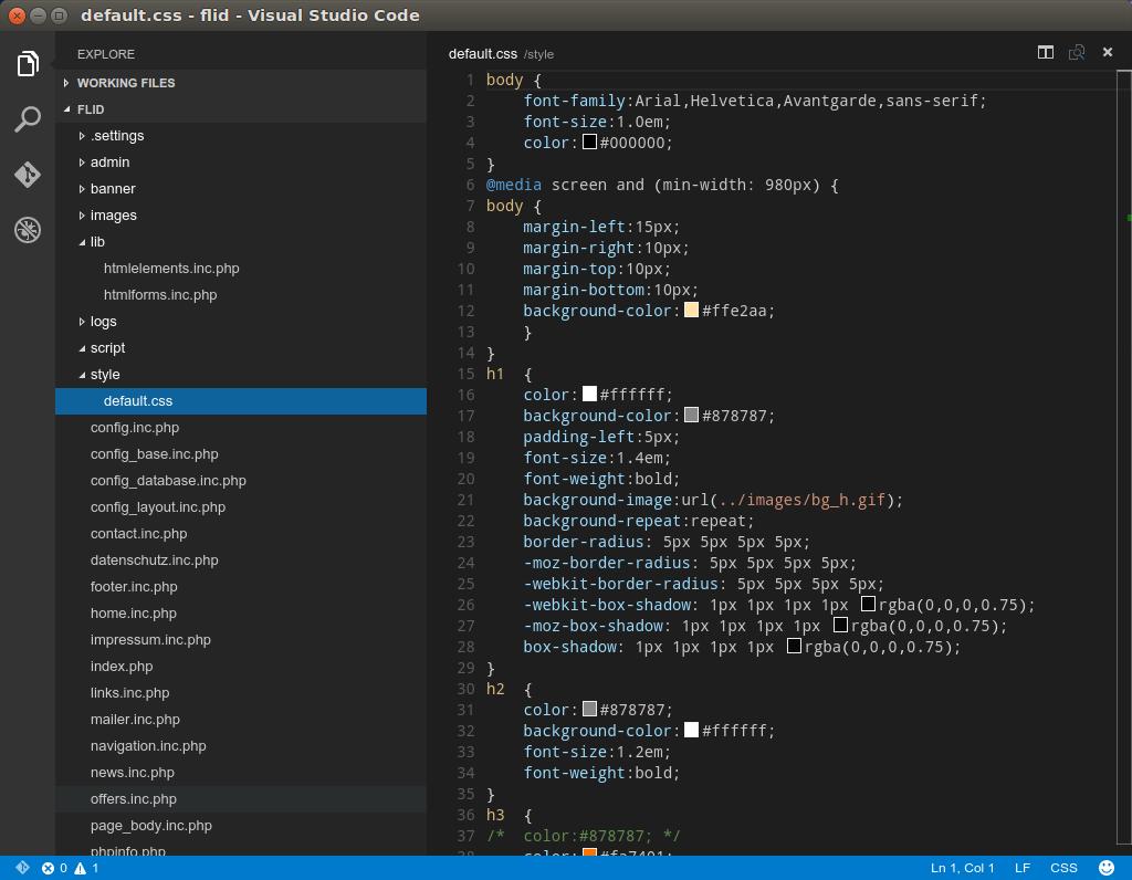 VS Code CSS