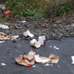 Fast-Food-Müll