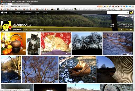 Mein flickr
